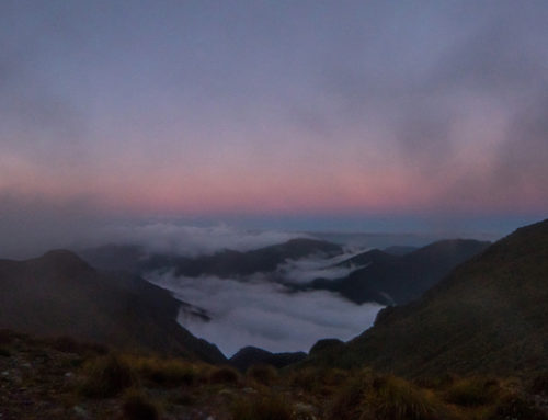 Adventure Photography Wellington – Mt Holdsworth Night Hike