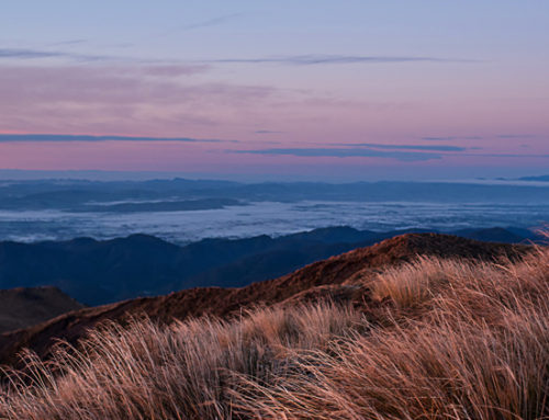 Sunrise at Mt Holdsworth – Tararuas Range, NZ